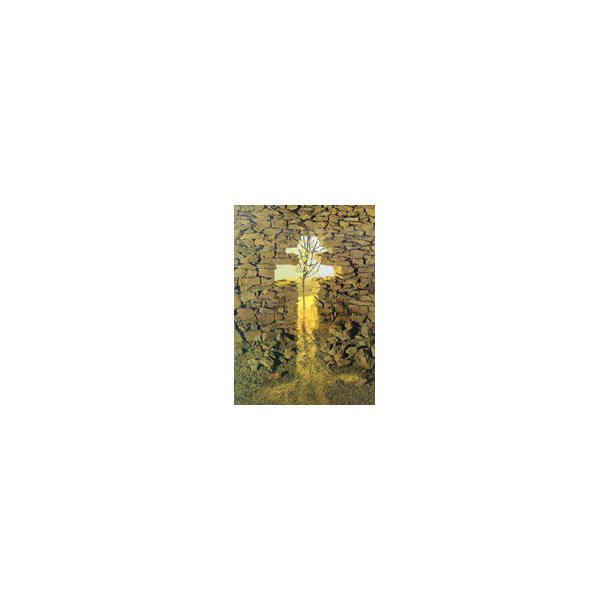 Kondolence-kort, stenmur med kors og træ